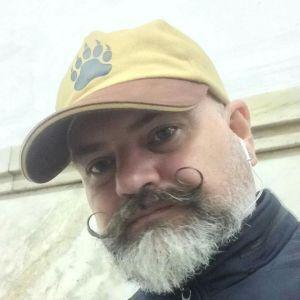 Paul Bear Profile Picture