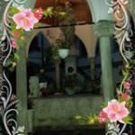 Michal Gina Profile Picture